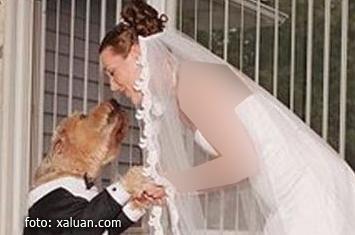 Anjing Kawin Dengan Wanita Cerita Sebenar Disebalik