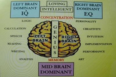 Mengungkap Rahasia Dahsyatnya Otak Kanan Manusia