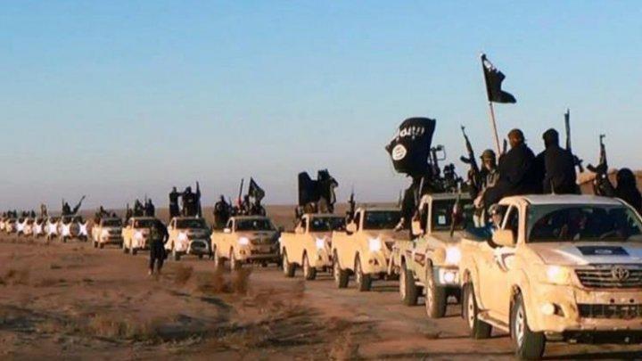 Mujahidin IS Siapkan Serangan Besar ke Kota Kurdi Kobane