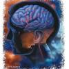http://www.voa-islam.com/timthumb.php?src=/photos2/stroke.jpg&h=235&w=355&zc=1