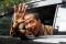 Pengunduran Diri Jokowi Tersendat di DPRD DKI Jakarta