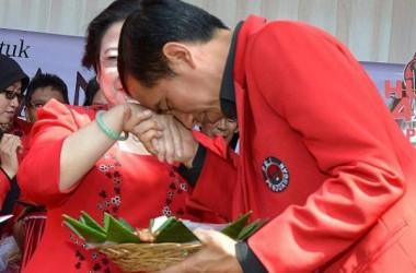 Mampukah Jokowi Menjinakkan Banteng?
