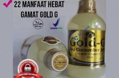 Gold G Gamat Selain Baik untuk Sembuhkan Luka, Ada 22 Manfaat lainnya...