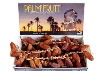 Kurma Palmfruit, Terkenal Murah dan Enak asal Tunisia, ini 20 Khasiatnya