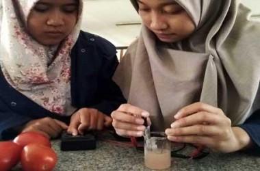 Mahasiswa ITS Ciptakan Baterai dari Tomat
