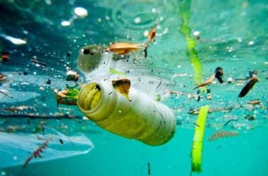 Pakar Ungkap Bahaya Plastik Mikro Bagi Kesehatan
