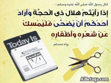Larangan Memotong Rambut   Kuku Bagi yang Mau Berkurban sejak Masuk  Dzulhijjah - VOA-ISLAM.COM 2de1f5512a